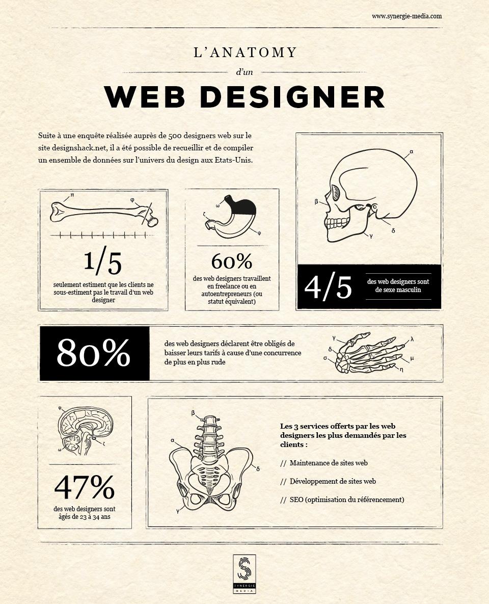 Infographie - L'anatomie d'un Web Designer