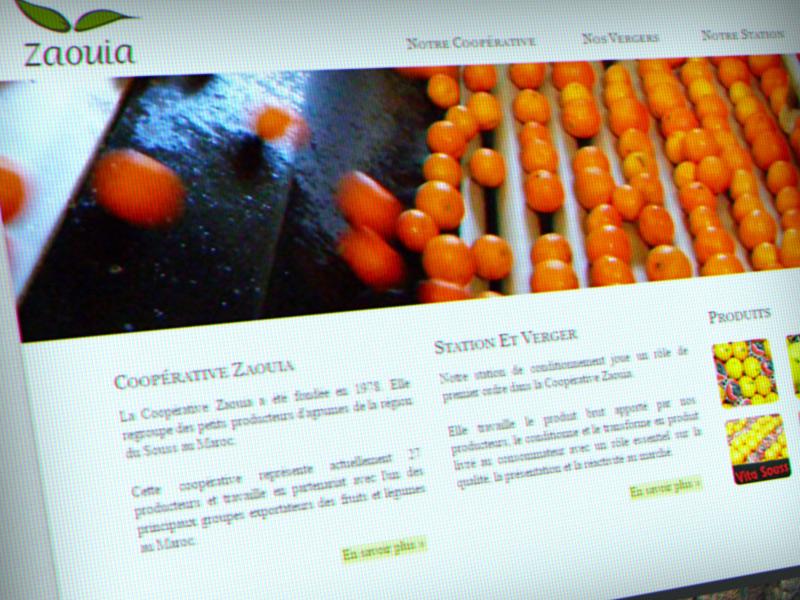 Cooperative Zaouia - 2009